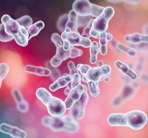 Verantwortliches Toxin für Wachstum von Legionellen identifiziert