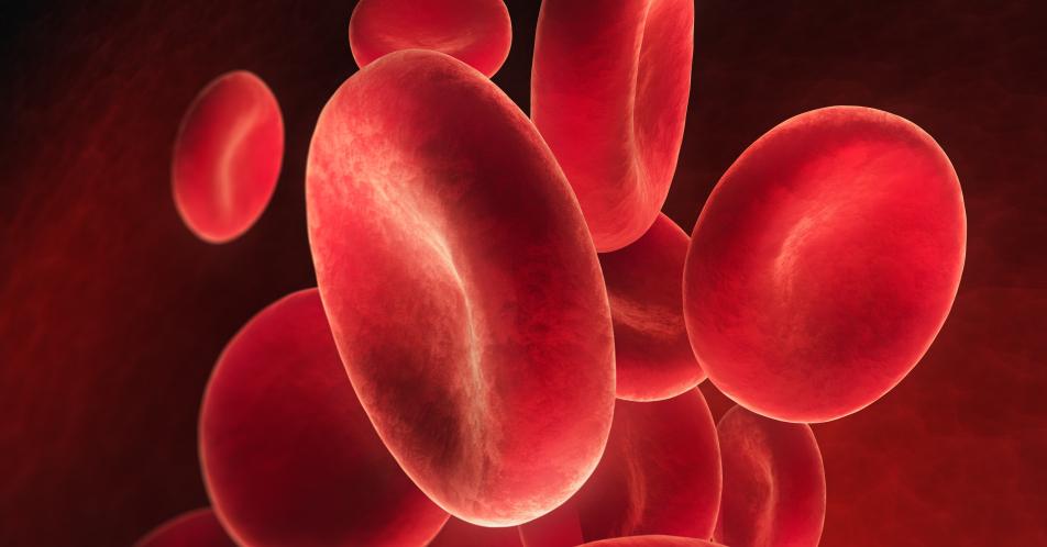 Eisenmangelan%C3%A4mie%3A+Aktuelle+Behandlungsstandards+und+Empfehlungen+f%C3%BCr+Diagnostik+und+Therapie