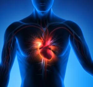 Herzinfarkt: T-Zellen-Bildung in mediastinalen Lymphknoten