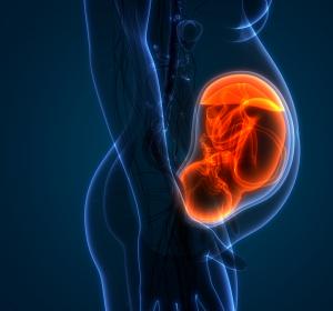Multiple Sklerose und Schwangerschaft: Änderung der Fachinformation für Interferon beta