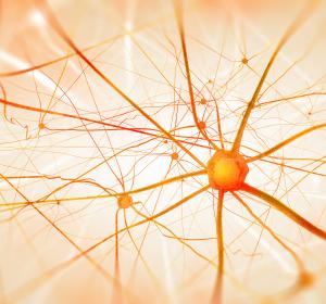 Neuropathische Schmerzen: S2k-Leitlinie um bildgebende Verfahren und Schmerzpsychotherapie erweitert