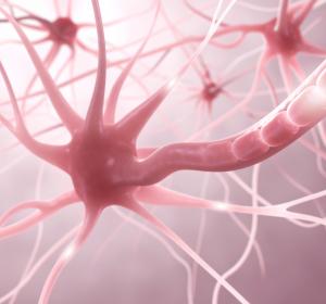 MS: Real-World-Daten zeigen anhaltende Wirksamkeit von Dimethylfumarat und Natalizumab