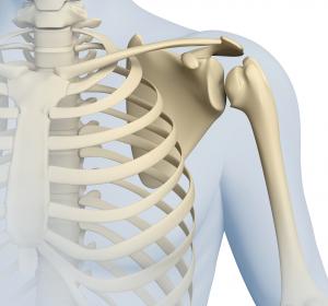 Experten raten zur sorgfältigen Abklärung bei Schulterschmerz