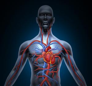 Undichte Trikuspidalklappen: Studie belegt langfristige positive Effekte durch Reparatur-Implantat