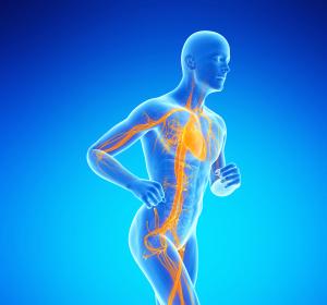 Einfluss von Funktionsstörungen der Endothelzellen auf Entwicklung einer Diabeteserkrankung