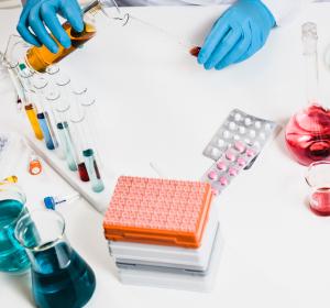 Ebola: Durch rVSV-EBOV ausgelöste Antikörperantwort entschlüsselt