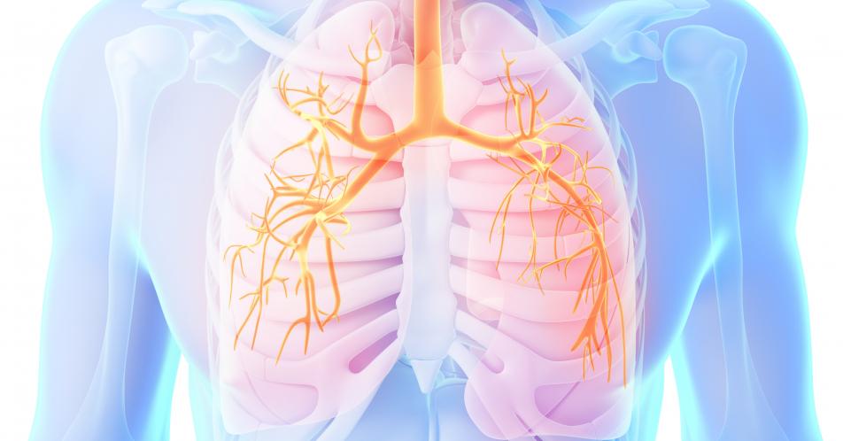 COPD%3A+Real-Life-Studie+TriOptimize+bildet+Versorgungsrealit%C3%A4t+ab+