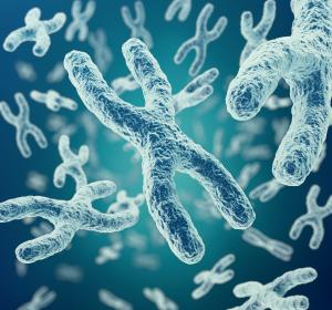 Osteogenesis imperfecta: Gen für möglichen Behandlungsansatz identifiziert