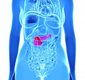 Hypoglykämie: CHMP-Empfehlung für nasales Glukagon