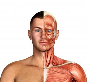 NDM: Verbesserung der myotonen Symptomatik unter Mexiletin