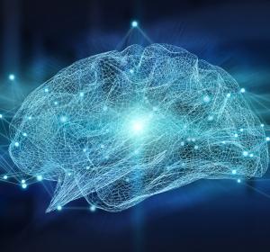 Neuronale Netzwerke: Entstehung raumzeitlicher Sequenzen