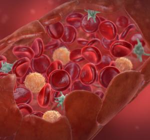 Herausragende Forschungsarbeiten zu Blutgerinnungsstörungen geehrt