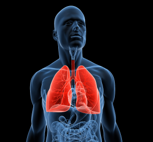Idiopathische Lungenfibrose: G-BA bescheinigt beträchtlichen Zusatznutzen für Nintedanib