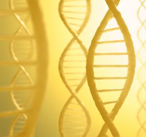 Neue Transport-Vehikel für zukünftige Gentherapien entwickelt