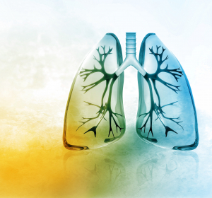 Akute und chronische Bronchitis