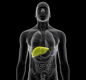 Typ-2-Diabetes: Günstige Auswirkung auf die Leberwerte im klinischen Studienprogramm VERTIS