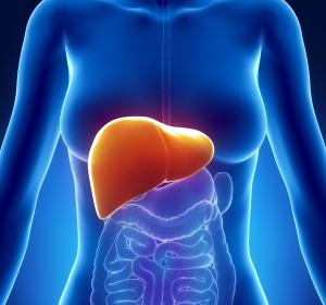 Leber: Neues Therapie-Target für Regeneration