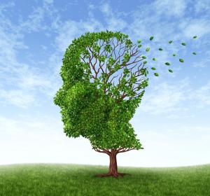 Morbus Alzheimer: Autophagie-Induktion durch Spermidin