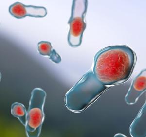 Clostridium difficile: Übertragung auch außerhalb von Krankenhäusern
