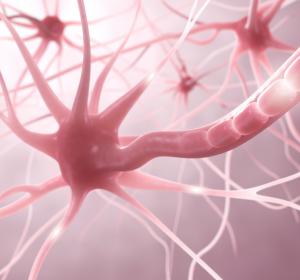 MS: Gehirngängiger BTK-Inhibitor erreicht primären Endpunkt in Phase-II-Studie