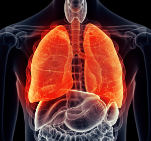 Asthma: Klimawandel erhöht Anforderungen an Therapie
