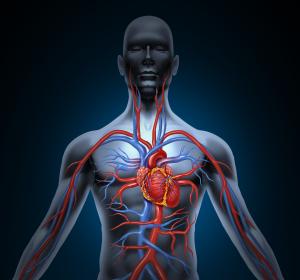 Fachübergreifende Empfehlung zu bildgebenden Verfahren bei ischämischen Herzerkrankungen