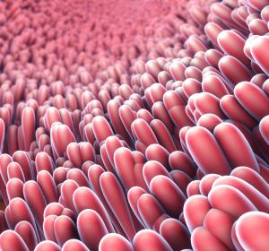 Darmdysbiose: Phagen-basierte Therapie