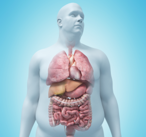 Adipositas und Diabetes: Neue Metabolische Klassifikation der Prolaktin-Spiegel