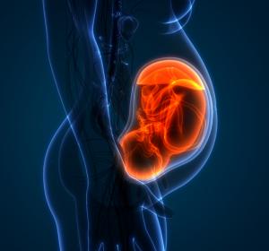 Gestation: Gesunde Ernährung alleine unzureichend