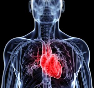 Chronische Herzinsuffizienz: Detaillierte Ergebnisse der Phase-III-Studie VICTORIA zu Vericiguat