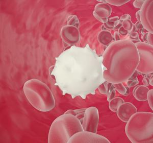 Lymphopenie könnte schweren Verlauf von COVID-19 vorhersagen