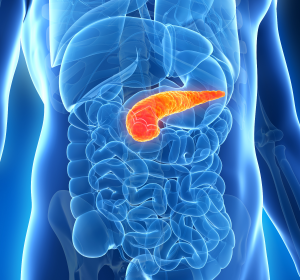 PPH bei Typ-2-Diabetes: Flexibler Alltag durch Mahlzeiteninsulin
