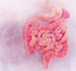 Mehrfach ungesättigte Fettsäuren: Ursache für chronisch entzündliche Darmerkrankungen?