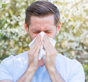 Allergien: Nachweis von Antikörpern im Nasensekret
