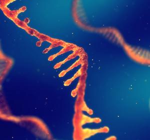 COVID-19-Vakzine: PEI erteilt im Schnellverfahren Genehmigung für klinische Testung