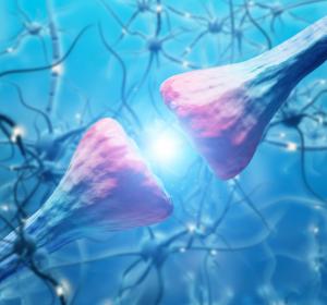 Parkinson-Krankheit kann im Darm beginnen