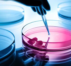 Remdesivir: Phase-III-Studie vergleicht 5- und 10-tägige Anwendung bei Patienten mit COVID-19