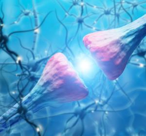 BTK-Inhibitor: signifikante Reduktion der Krankheitsaktivität bei der schubförmigen Multiplen Sklerose