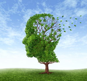 Demenz: Präventionsmöglichkeit Autophagie