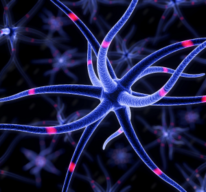 SARS-CoV-2-Infektionen: Register CNS-COVID19 erforscht Beteiligung des Gehirns