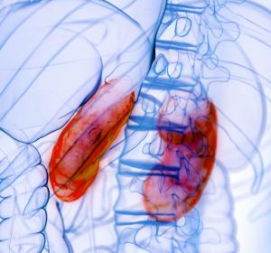 Chronische Nierenerkrankung und Typ-2-Diabetes: Fortschreiten der CKD unter Prüfsubstanz Finerenon verzögert