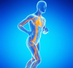 COVID-19 im Leistungssport: Auswirkungen auf die Herzfunktion