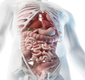 Molekulare Klassifikation gastrointestinaler Tumoren