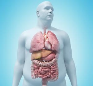 Adipositas: Zentrale Hürden der Behandlung