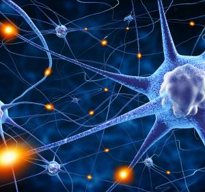 DGN: Fast 60% der Deutschen leiden unter einer neurologischen Erkrankung