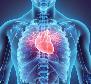 Herzinsuffizienz: Reduktion kardiovaskulärer Todesfälle in Phase-III-Studie