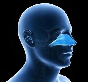 Typ-2-Inflammation: Interdisziplinäre Zusammenarbeit bei Asthma, Neurodermitis und Nasenpolypen