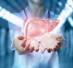 Systemchirurgie für die Leber