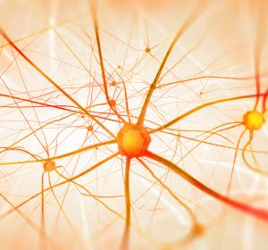Drei Jahre Cladribin-Tabletten in der MS-Therapie: Praxistest bestanden