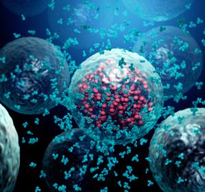 Protease-Inhibitor Aprotinin verhindert in vitro Eindringen von SARS-CoV2 in Wirtszellen